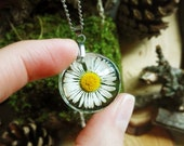 Daisy flower necklace, Real daisy jewelry, Pressed flower necklace, Daisy necklace, Fairytale gifts, Dainty necklace, Real flowers necklace