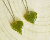 Nature inspired necklace, Real leaf pendant, Gift for couple wedding, Green leaf necklace, Nature jewelry, Botanical necklace, Nature gifts
