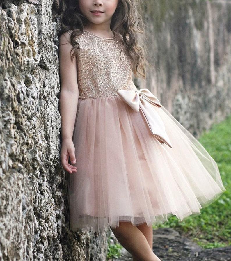 Flower Girl Flower Girl Dress,Pink Dress,FREE SHIPPING Pink Party Dress glitter Dress Pink Dress