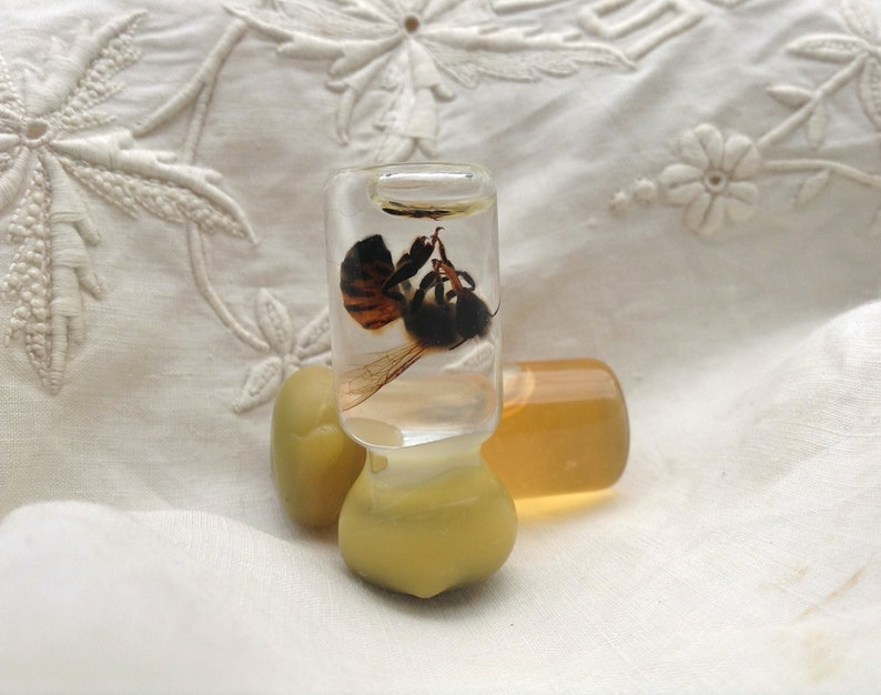 Tiny Bottled Preserved Honey Bee with Tiny Bottle of Honey