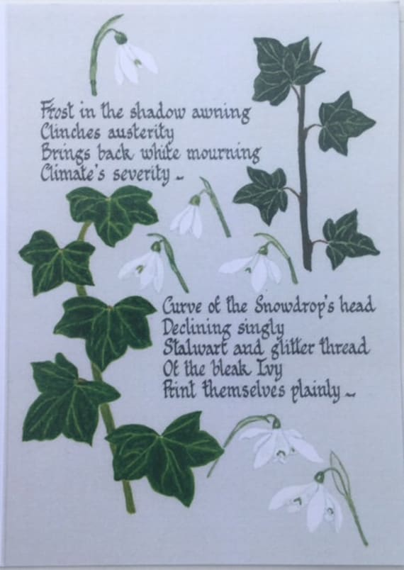 Poetry Greetings Card Ivy And Snowdrops