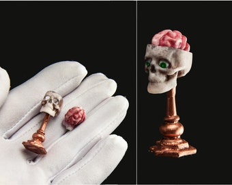 Skull with brain 1:12 scale Halloween miniature anatomical model. fairy specimen. 1/12 dollhouse halloween witch laboratory spooky diorama
