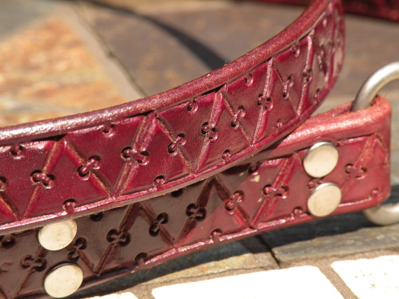 Length 62 inches X 34 Satisfaction Guaranteed. Leather dog leash with shiny nickel plated brass hardware Custom made to your order