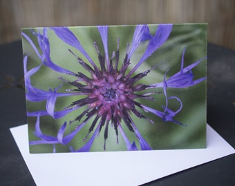 A6 Card Printed on recycled card