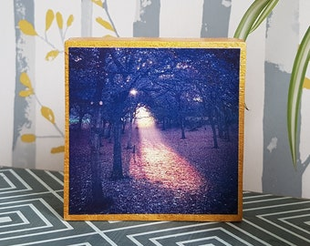 Square Wooden Art Block - Home Decor Wall Art - Photographic Art Print - Woodland Nature Inspired - Wood Anniversary Gift - Reclaimed Rustic