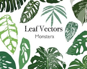 Vector pack - 12 exotic monstera leaf illustrations PNG SVG EPS