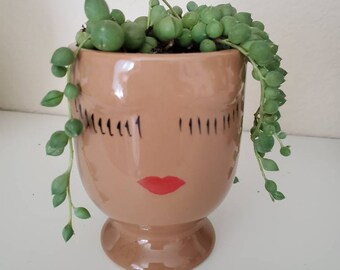 Succulent Arrangement String of Pearls in Small, Caramel,  Chocolate or Vanilla Ceramic Face Planter