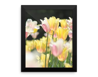 Yellow Tulips Framed Poster