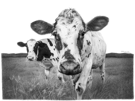 Koe potlood tekening koe kunst print Holstein koe potlood | Etsy
