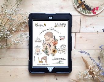 NUMÉRIQUE/ SIÈGE bébé in utero; illustration à colorier/accouchement naturel; doula; coloriage; positions physiologiques; sage-femme; uterus