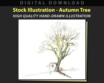 Autumn Tree stock illustration