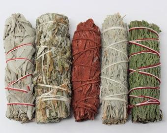 Sage Bundle: Smudge Kit 5 Stick SAMPLER - White Sage, Black Sage, Blue Sage, Cedar Sage, Dragons Blood Sage (Incense)