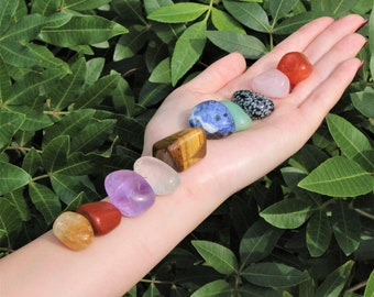 Beginners Crystal Kit, 10 pcs In Velvet Pouch - Most Popular Tumbled Crystals (Chakra Protection Healing Sets)