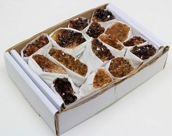Citrine Crystal Cluster: Wholesale Bulk 10-15 Piece Lot (Citrine Geode, Citrine Crystal)