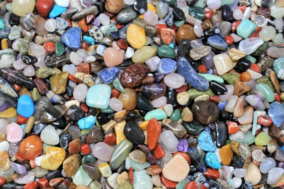 1 lb Bulk Lot Petrified Wood Tumbled Stone Crystal Healing Tumble 16 oz