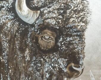 Western, Wildlife Buffalo Bison Painting