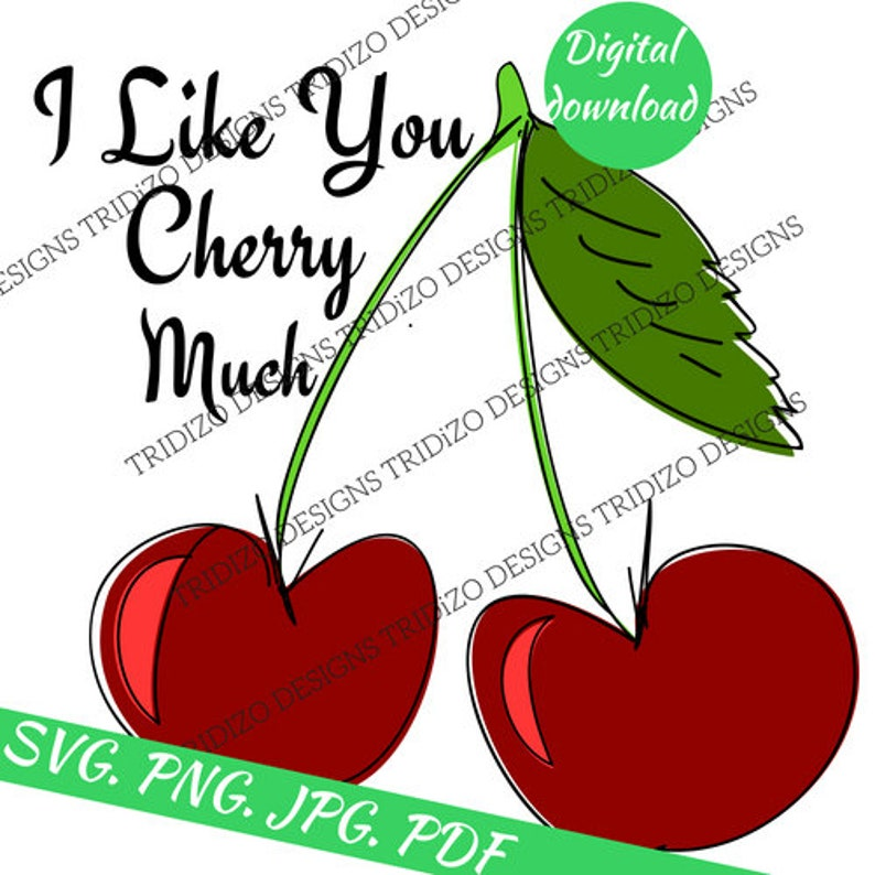 cd14babe69a0a Svg Digital Prints Funny Quote Png File Clipart I Like You