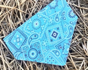 Dog Bandana, Pet Bandana, Teal, Teal Bandana, Slip-on, Collar, Grooming, Pet Accessory, Puppy, Dog Fashion, Cat