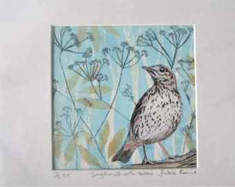 original, limited edition collagraph print of a Songthrush bird.