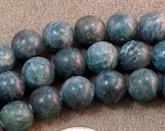 Blue skulls and tassels dakota stones halloween