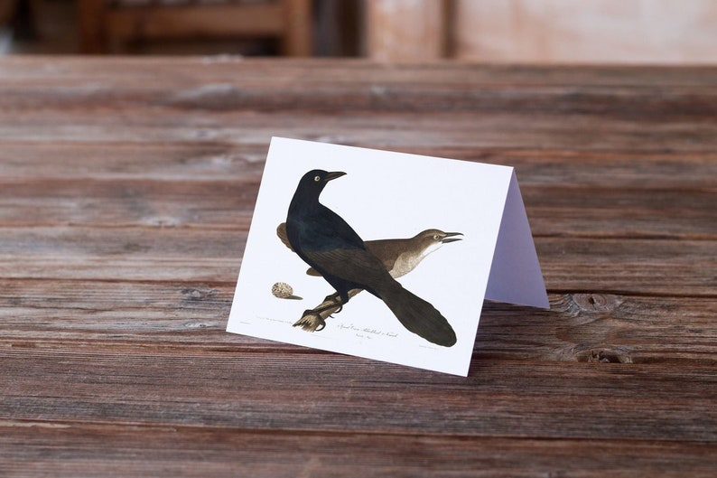 Bird Note Card-Number 17