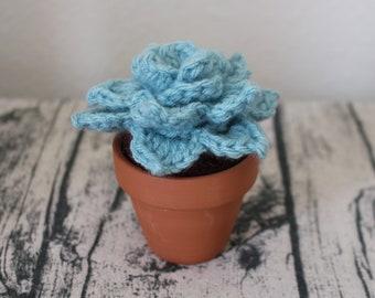 Stuffed Echeveria – Crochet Succulent – Amigurumi