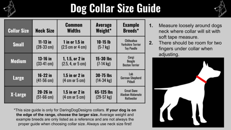 1 in 1.5 in 2 in Collar Personalized Padded Dog Collar MARTINGALE Dog Collar Custom Soft Dog Collar Embroidered Fleece Lined Collar