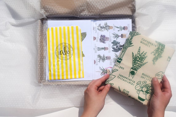 House Plant Illustrated Care Package / Plant Lover Gift / Tote Bag / Pin Badge / Illustration Art Prints / Rare / Illustrated by Aimee
