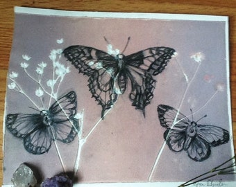 Original mixed media drawing - 3 butterflies
