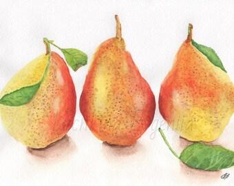 "Still life, pears, fruit, kitchen art, red, orange. Pear original art. Original watercolor painting (8.27"" x 11.02"")"