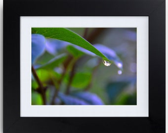 8 x 10 Framed and Matted Original Photography for your wall art. (Please specify frame color)