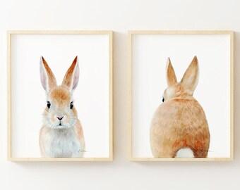 CHM To Paint Rabbit Head