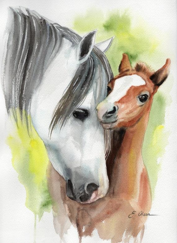 Original Watercolor Horse Painting Foal Horse Wall Art Etsy