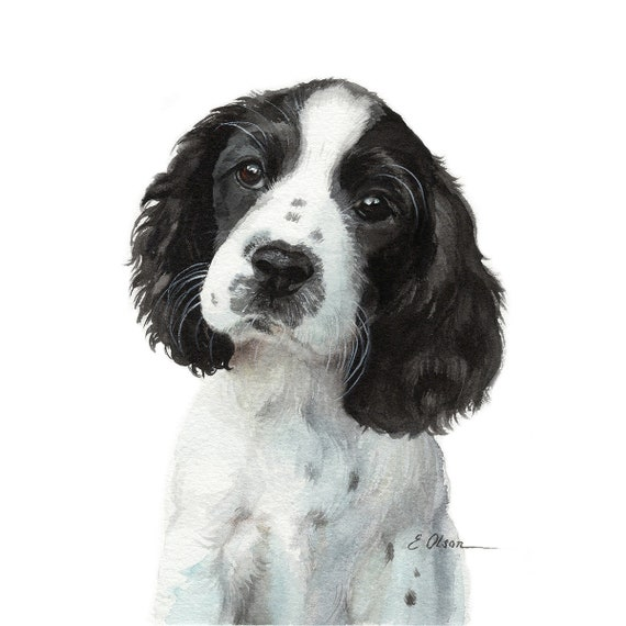 Adorable Black /& White Springer Spaniel Print Apron