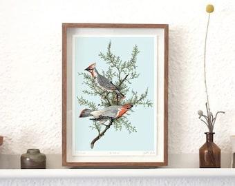 A4 Fine Art print Birds
