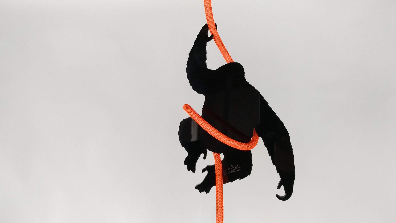 Kabel King Kong