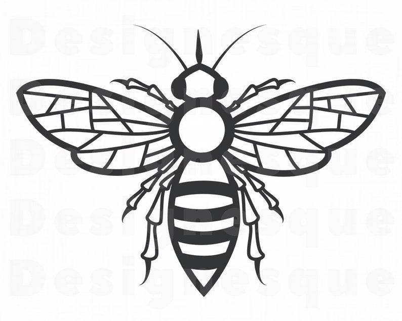 Bee Svg Queen Bee Svg Honey Svg Bee Clipart Bee Files For