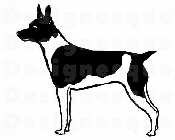 Rat Terrier SVG Bundle PNG Dog Design Pet Canine Logo Mascot Clipart Vector Cut Files Cricut Eps Dxf