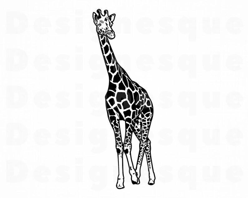 items similar to origami giraffe diagrams on etsy schema diagram Origami Giraffe Diagrams