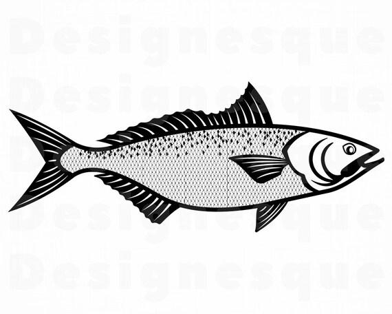 Download Kahawai Svg Arripis Trutta Svg Fishing Svg Fish Svg Etsy