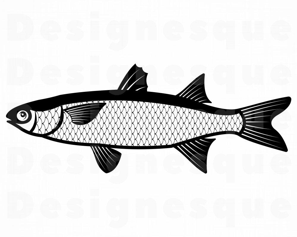 Download Mullet Svg Fishing Svg Fish Svg Fishing Clipart Fishing Etsy