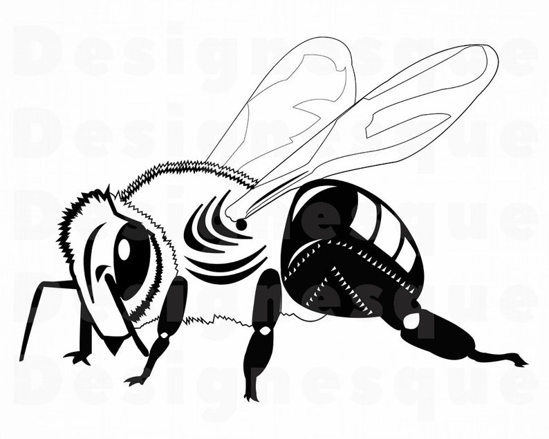 Bee 5 Svg Bee Svg Queen Bee Svg Honey Svg Bee Clipart