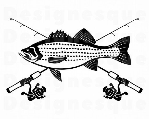 Download Striped Bass Fishing Svg Fishing Logo Svg Fish Svg Fishing Etsy