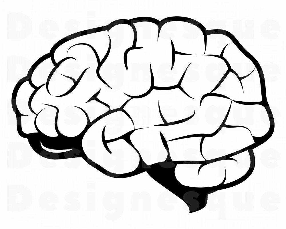 Brain 2 SVG Brain Svg Brain Clipart Brain Files for | Etsy