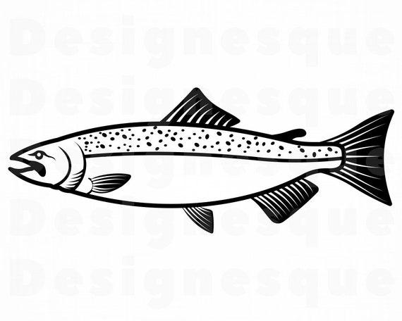 30+ Salmon Vector
