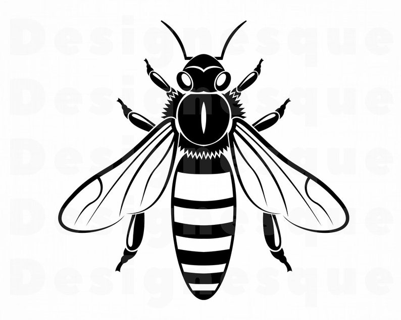 Bee 14 Svg Bee Svg Queen Bee Svg Honey Svg Bee Clipart