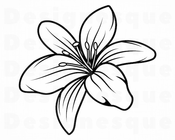 Lily Flower 3 Svg Lily Flower Svg Lily Svg Flower Svg Etsy