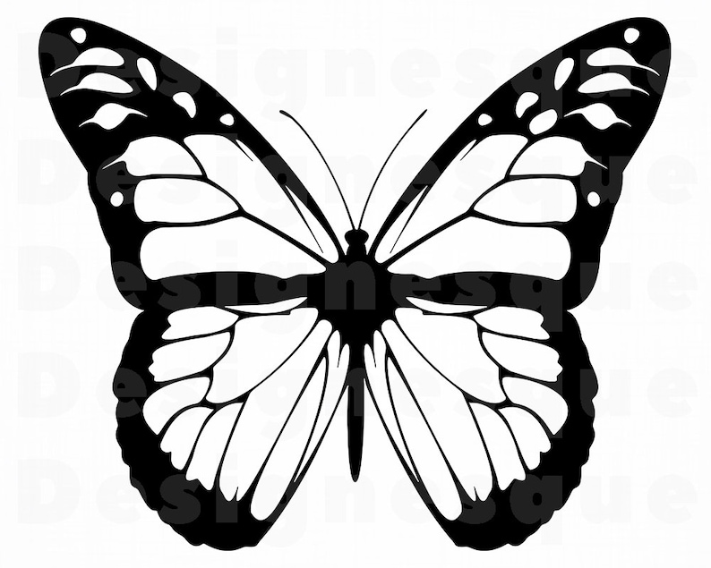 Monarch Butterfly Outline Svg Butterfly Svg Monarch