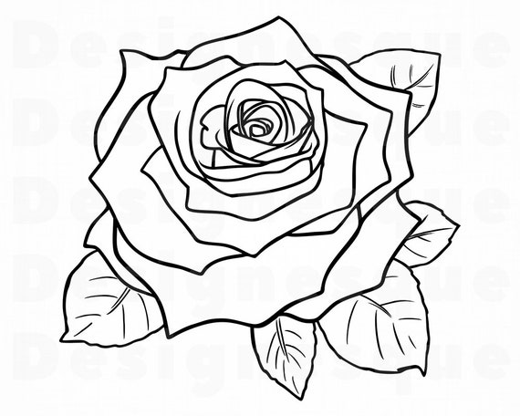 Rose Outline Svg Flower Outline Svg Rose Outline Clipart