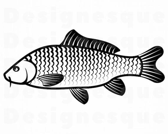 Download Carp Svg Fishing Svg Fish Svg Fishing Clipart Fishing Etsy